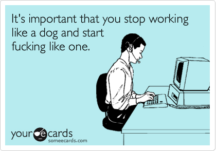 It's important that you stop working like a dog and start fucking like one.