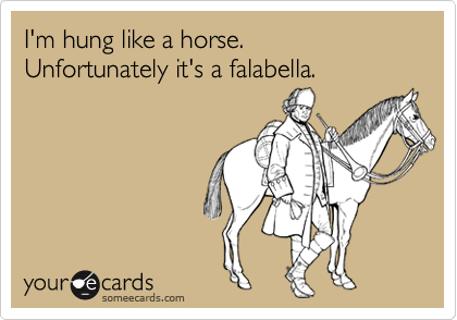 I'm hung like a horse. Unfortunately it's a falabella.