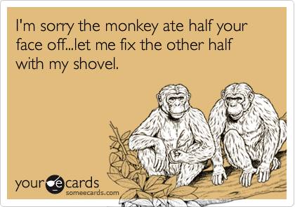 I'm sorry the monkey ate half your face off...let me fix the other half with my shovel.