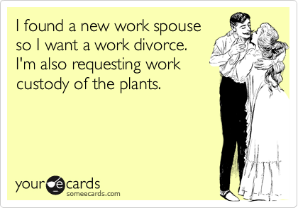 I found a new work spouse