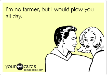 I'm no farmer, but I would plow you all day.