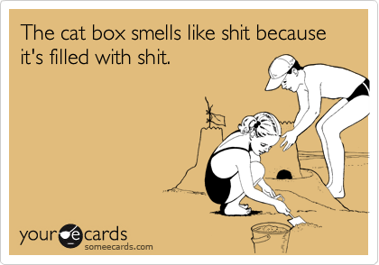 The cat box smells like shit because it's filled with shit.