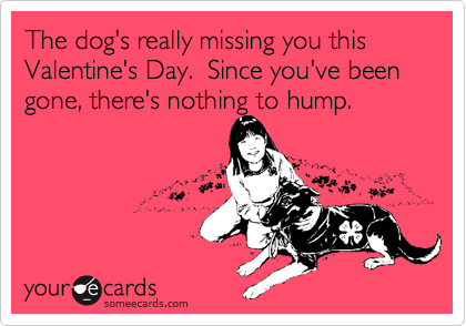 The dog's really missing you this Valentine's Day.  Since you've been gone, there's nothing to hump.