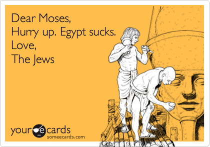 Dear Moses, 