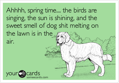 Ahhhh, spring time.... the birds are singing, the sun is shining, and the sweet smell of dog shit melting on the lawn is in theair.