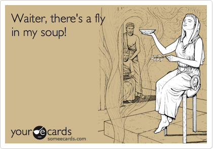 Waiter, there's a fly