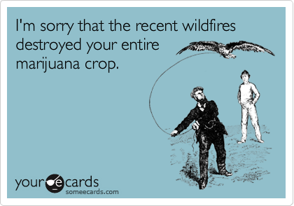 I'm sorry that the recent wildfires destroyed your entiremarijuana crop.