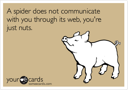 A spider does not communicate with you through its web, you're just nuts.