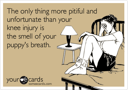 The only thing more pitiful andunfortunate than yourknee injury isthe smell of yourpuppy's breath.