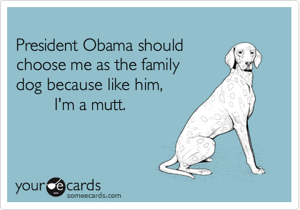 President Obama should 