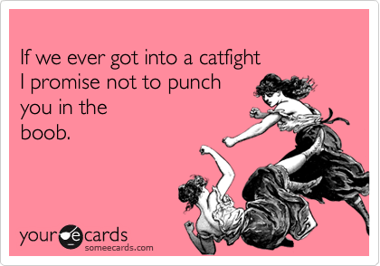 If we ever got into a catfight  I promise not to punch  you in the boob.