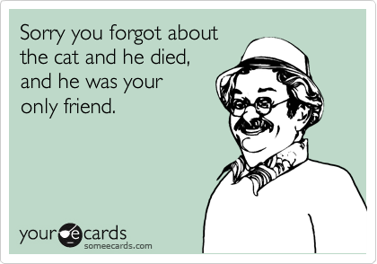 Sorry you forgot aboutthe cat and he died,and he was youronly friend.