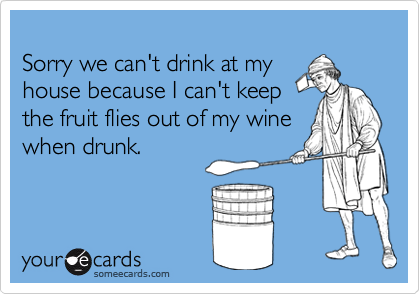 Sorry we can't drink at myhouse because I can't keepthe fruit flies out of my winewhen drunk.