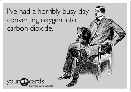 I've had a horribly busy day converting oxygen into carbon dioxide.