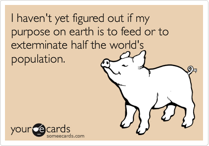 I haven't yet figured out if my purpose on earth is to feed or to exterminate half the world's population.