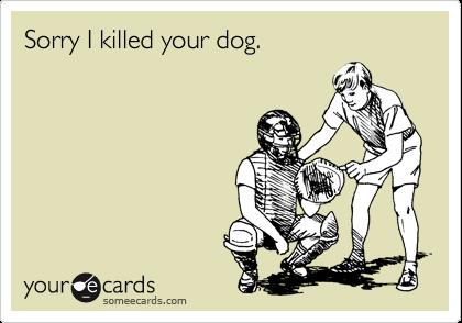 Sorry I killed your dog.
