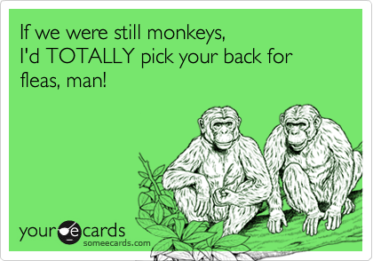 If we were still monkeys,I'd TOTALLY pick your back for fleas, man!