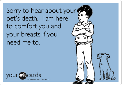 Sorry to hear about yourpet's death.  I am hereto comfort you andyour breasts if youneed me to.