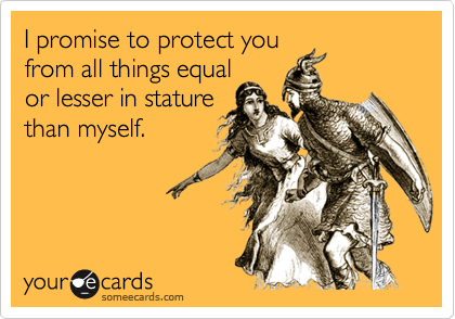 I promise to protect you