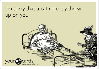 I'm sorry that a cat recently threw up on you.
