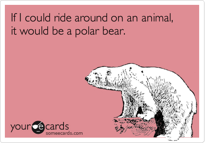 If I could ride around on an animal, it would be a polar bear.