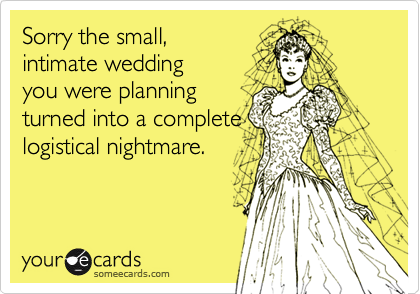 Sorry the small,intimate weddingyou were planningturned into a completelogistical nightmare.
