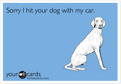 Sorry I hit your dog with my car.
