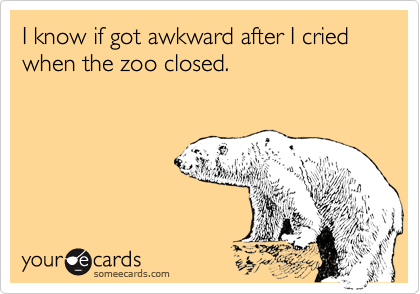 I know if got awkward after I cried when the zoo closed.