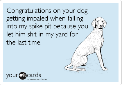 Congratulations on your dog getting impaled when falling