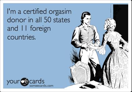 Orgasim arts com