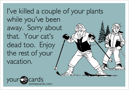 I've killed a couple of your plants while you've been