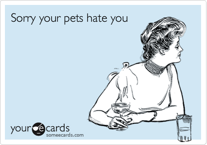 Sorry your pets hate you