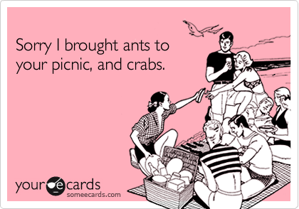 Sorry I brought ants to your picnic, and crabs.