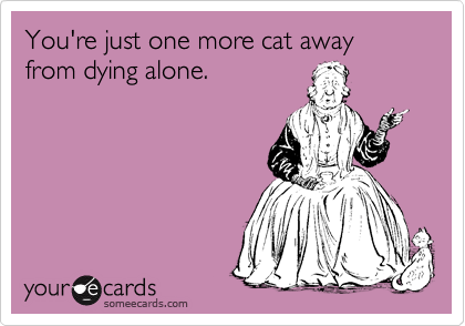 someecards.com - You're just one more cat away from dying alone.