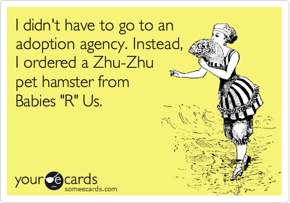 """I didn't have to go to an adoption agency. Instead,  I ordered a Zhu-Zhu pet hamster from Babies """"R"""" Us."""