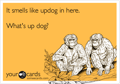 It smells like updog in here.What's up dog?