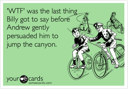 'WTF' was the last thingBilly got to say beforeAndrew gentlypersuaded him to jump the canyon.