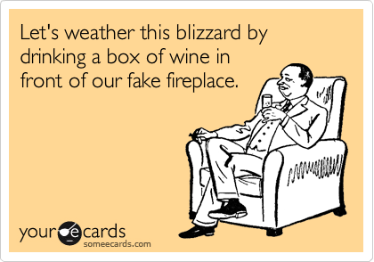 Let's weather this blizzard by drinking a box of wine in front of our fake fireplace.
