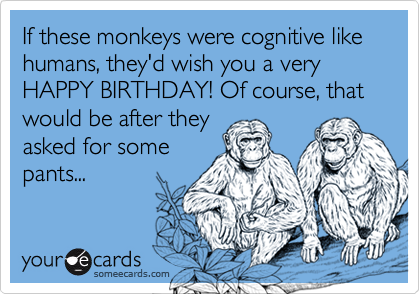 If these monkeys were cognitive like humans, they'd wish you a very HAPPY BIRTHDAY! Of course, that would be after theyasked for some pants...