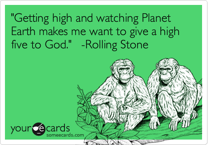 """""""Getting high and watching Planet Earth makes me want to give a high five to God.""""   -Rolling Stone"""