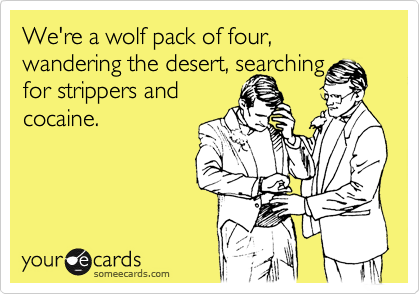 We're a wolf pack of four, wandering the desert, searching 
