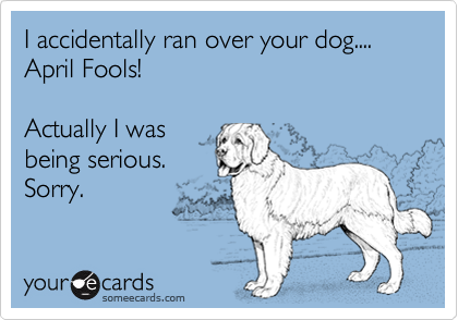 I accidentally ran over your dog.... April Fools!Actually I was being serious.Sorry.