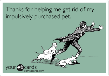 Thanks for helping me get rid of my impulsively purchased pet.