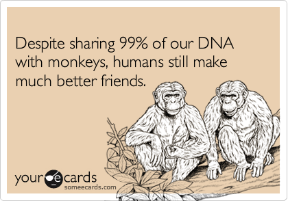 Despite sharing 99% of our DNA with monkeys, humans still make much better friends.