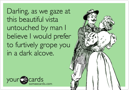 Darling, as we gaze at  this beautiful vista untouched by man I believe I would prefer to furtively grope you in a dark alcove.