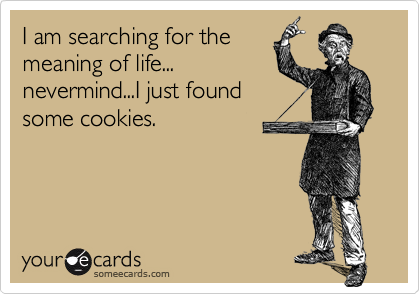 I am searching for the meaning of life... nevermind...I just found some cookies.