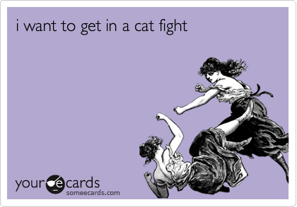 i want to get in a cat fight