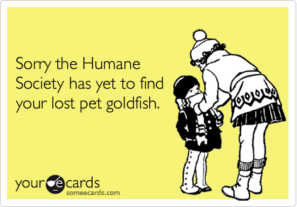 Sorry the Humane