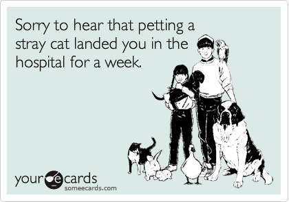 Sorry to hear that petting a stray cat landed you in the hospital for a week.