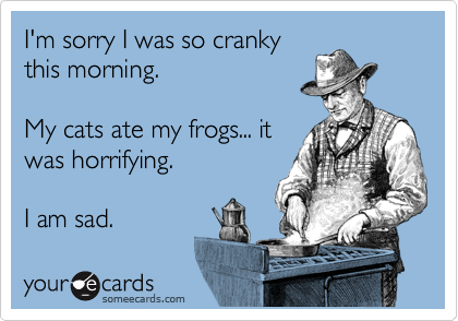 I'm sorry I was so cranky this morning.    My cats ate my frogs... it was horrifying.  I am sad.
